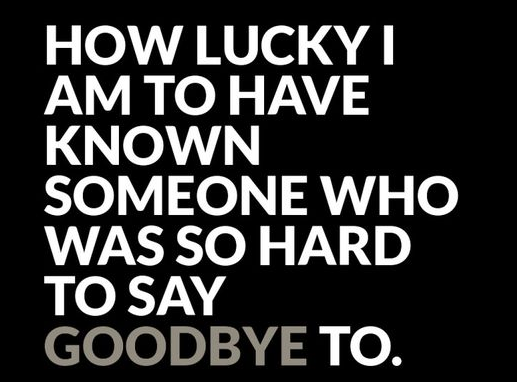 Known Someone Who Was Good Bye Quotes